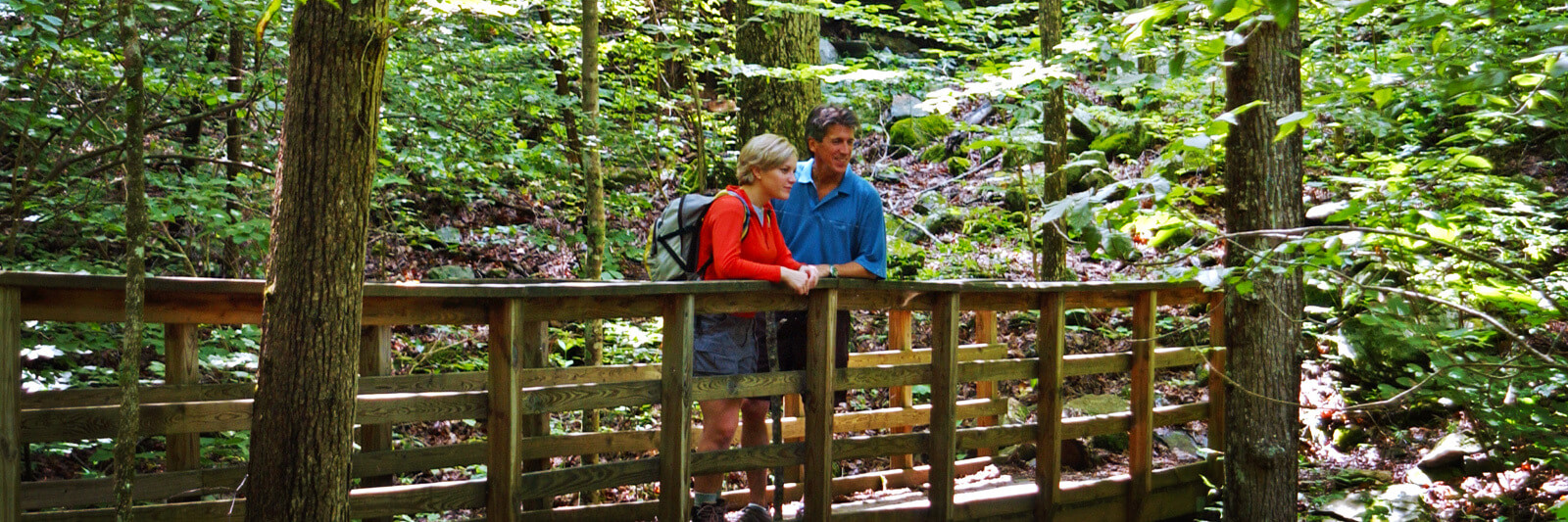 Brasstown-Valley-Hiking-Trails-Appalachian-Trail-Acitivities-Hiking-1