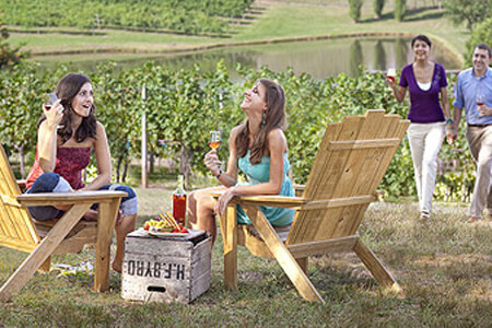 Brasstown Valley Exclusive Trips And Excursions Vineyards