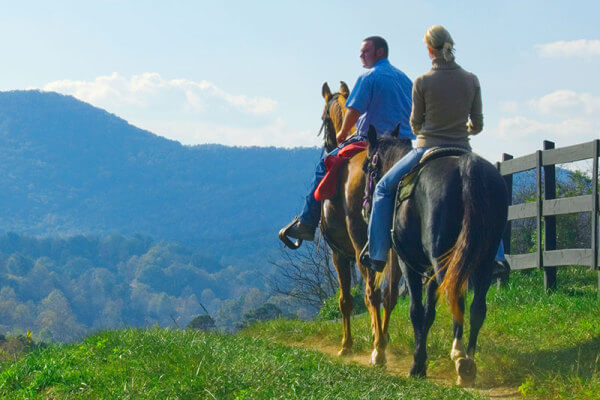 Brasstown-Valley-Trail-Horseback-Riding-Georgia-Homepage-Activities-Stables