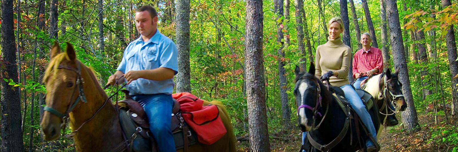 Brasstown-Valley-Trail-Horseback-Riding-Georgia-Stables-1