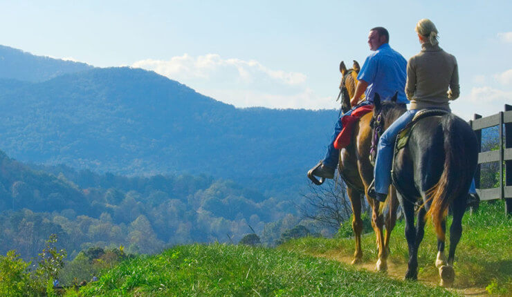 Brasstown-Valley-Mountain-Getaways-Georgia-Activities