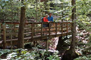 brasstown valley activites hiking