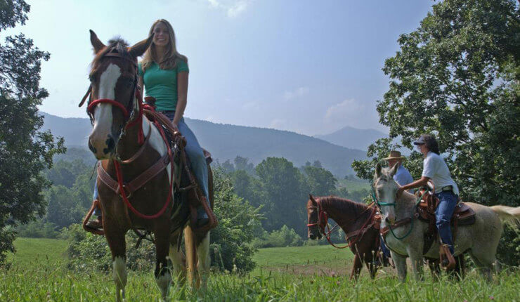 brasstown valley stables horseback riding