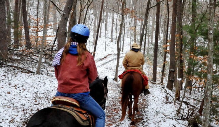 brasstown valley stables horseback riding snow