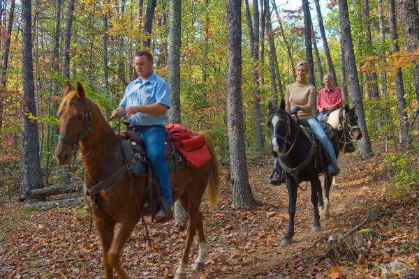 http://www.brasstownvalley.com/wp-content/uploads/2014/09/brasstown-valley-stables-horseback-riding3.jpg