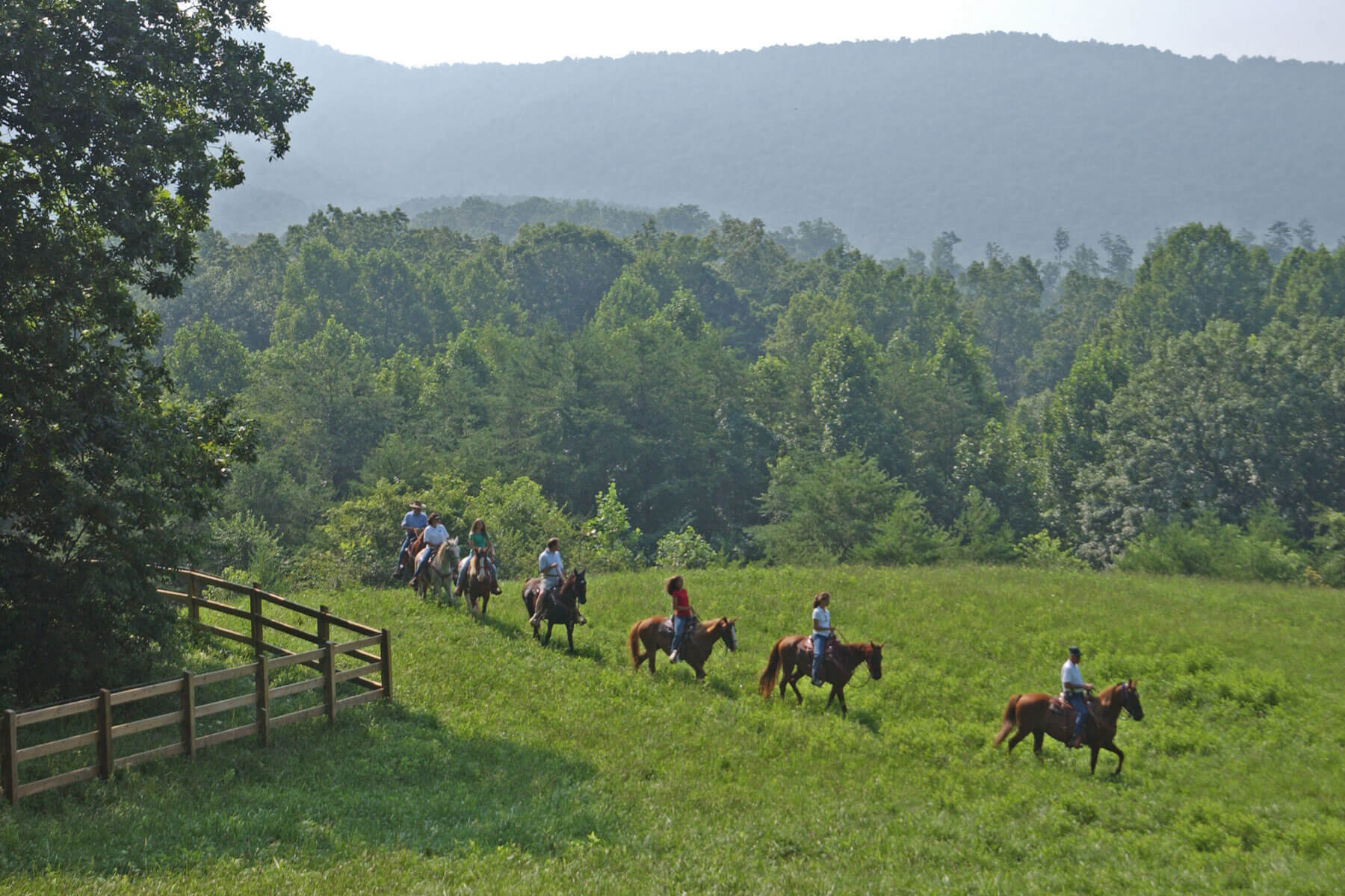 sbrasstown valley stables horseback riding group
