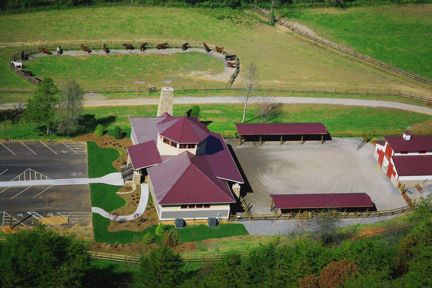 Brasstown-Valley-Mountain-Horseback-Riding-Georgia-Stables-Programs-Western-Riding-Lessons