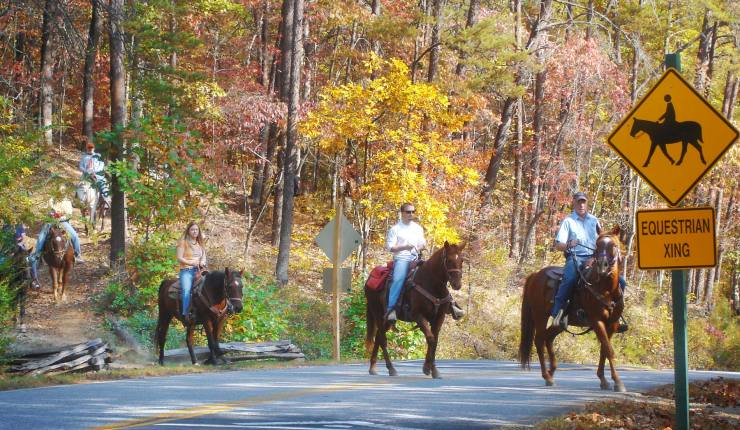 Brasstown Valley Stables Programs Wranglers Breakfast Ride