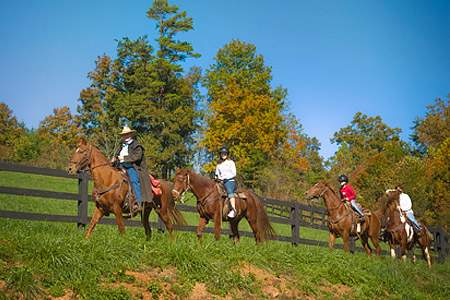 Brasstown Valley Stables Programs