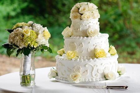 Brasstown Valley Georgia Wedding Packages PackagesSaluda
