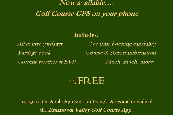 https://www.brasstownvalley.com/wp-content/uploads/2015/07/Golf-App-Flyer2.jpg